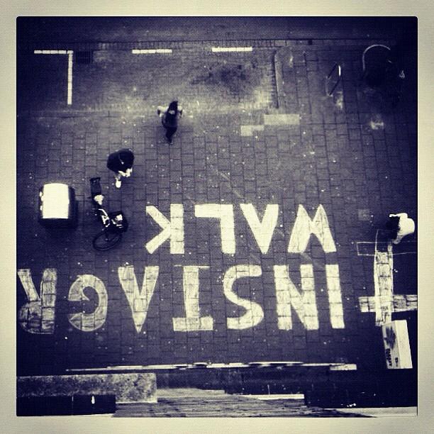 Instagram Walk Rotterdam #instagramwalk010